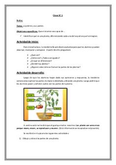 Secuencia Didáctica de Ciencias Naturales Education, Mary, Science Lessons, School, Science Activities, Writing Activities, Learning, Teaching