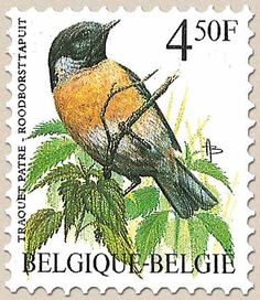 belgian stamps Birds 'Roodborsttapuit/Traquet pâtre