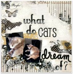 What Do Cats Dream Of Word Challenge, More Than Words, Page Layout, Scrapbook Pages, Scrapbooking Layouts, Scrapbooks, Maine, Dog Cat, Challenges