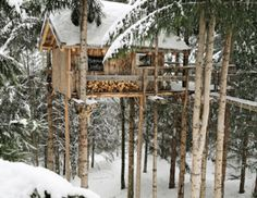 OK... I want to live in this tree house.  And is that SNOW on the Palm Trees... where IS this?
