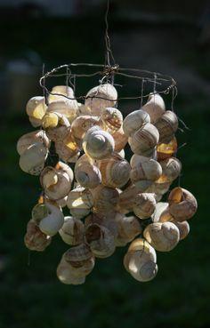 Snailshell wind chime by Marek Jakub, via 500px