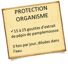 extrait de pépin de pamplemousse recette Important Facts, Flash Photography, Medicinal Herbs, Natural Healing, Doterra, Better Life, Good To Know, Affirmations, Detox