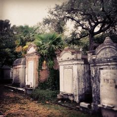 New Orleans Lafayette Cemetery St Louis Cemetery, Lafayette Cemetery, Cemetery Art, French Quarter, Slytherin, New Orleans Louisiana, New Orleans Wedding, Crescent City, Places To See