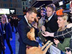 El perro de Tom Hardy, la gran estrella de la alfombra roja
