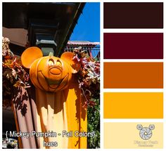 Disney Park Photography - Photo: Mickey Pumpkin Fall Color Pallete