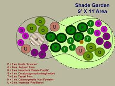 Shade Garden Ideas shade garden Deep Shade Large Evergreen Or Deciduous Trees With Low Branches Such As Norway Spruce