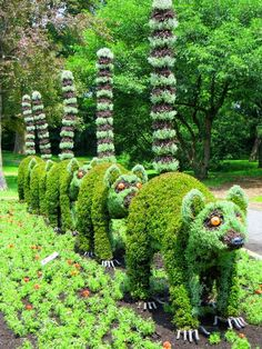 Montreal International Mosaicultures, Panacea de la Horticultura - El Encanto Oculto De La Vida