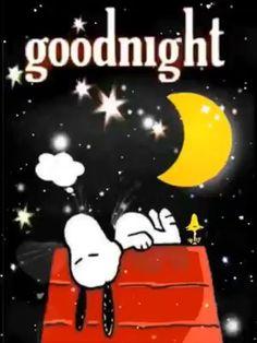 Goodnight - Informationen zu Goodnight Pin Sie k. Cute Good Night, Good Night Gif, Good Night Sweet Dreams, Funny Good Night Images, Funny Good Night Quotes, Good Night Greetings, Good Night Messages, Good Night Wishes, Images Snoopy
