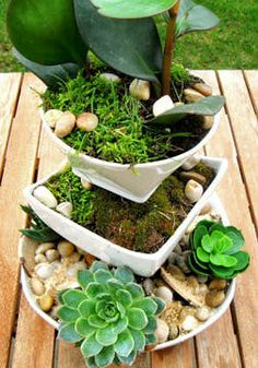 20 DIY Outdoor Decor & Outdoor Decorating Projects.maybe do this w/indoor plants 4 coffee table centerpiece
