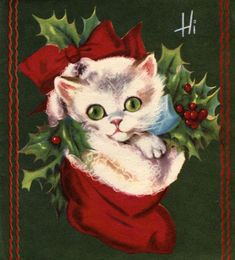 white kitten in Christmas stocking; vintage Christmas card