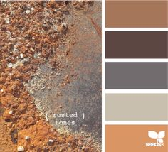 Her name is Jessica! She keeps a wonderful website full of ideas for you to choose the right colors. This website is so worth using when deciding what colors to use. Design Seeds
