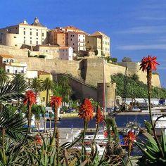 Envie d'ailleurs ?? La #Corse votre destination idéale avec #Aircorsica #Calvi #Balagne #avion #vacances #detente #soleil #mer #amis #famille #bonheur #amour