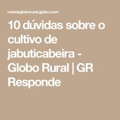 10 dúvidas sobre o cultivo de jabuticabeira - Globo Rural | GR Responde