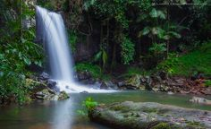 7 Amazing waterfalls in Northern NSW and Gold Coast Larissa Dening Photography | Explore.Capture.Live