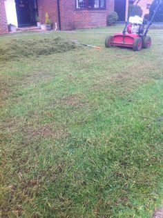 Scarification important towards having a beautiful lawn