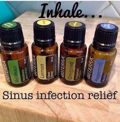 Sinus Infection relief with DōTerra essential oils