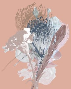 Contemporary photography and artwork Mauren Brodbeck Loyalland, Untitled 14 Contemporary Photography, Contemporary Art, Filmmaking, Artist, Artwork, Nature, Flowers, Color, Cinema