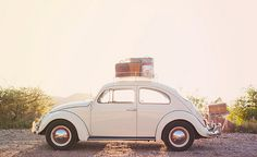 Bug packed up Road Trip / By lizettegarrison at flickr