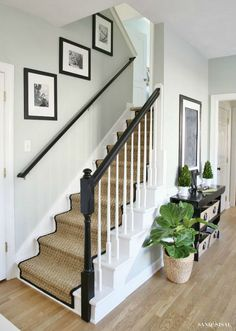 Sisal runner with contrasting trim. White Painted Staircase Makeover with Seagrass Stair Runner. Full step by step tutorial from removing the old carpet to staining the banisters, to installing the stair runner. Painted Staircases, Staircase Railings, Staircase Design, Stairways, Banisters, Staircase Ideas, Staircase With Runner, Black Banister, Modern Staircase