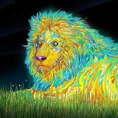 Trippy Art Photo Manipulation Psychedelic Lion Ipad   Wallpaper