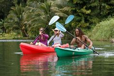Stop by our shop and private dock in Hanalei for kayak rentals, kayak tours, surf lessons, SUP rentals, surfboard rentals, and more.