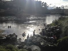 Spa-Park-free-hot-springs-Taupo-backpackers (1)