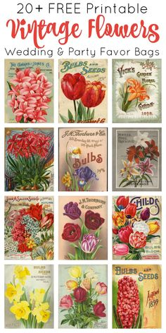 Print and make your own gardening themed party favor bags featuring artwork from vintage seed catalogs. This free collection includes … Vintage Labels, Vintage Cards, Vintage Images, Party Printables, Free Printables, Vintage Seed Packets, Seed Catalogs, Party Favor Bags, Favor Boxes