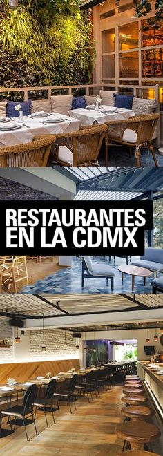 27f9b91a3913f 45 mejores imágenes de Lo Mejor de la CDMX