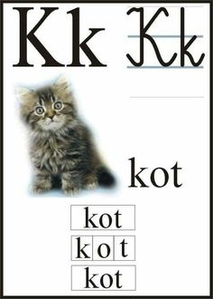 Polish Alphabet, Education, Cats, Movies, Movie Posters, Animals, Puzzle, Speech Language Therapy, Therapy