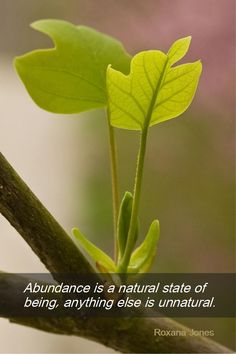 Daily Quotation for March 18, 2013 #quote #quoteoftheday Abundance is a natural state of being, anything else is unnatural. - Roxanna Jones