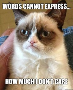 Words cannot express how much i don't care ~ Grumpy Cat