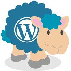 Website design India