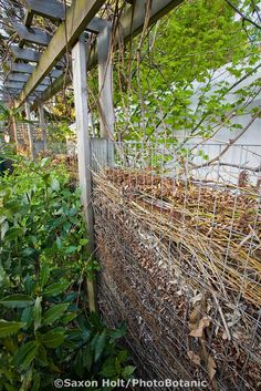 What a great idea.  Love the look of it, too. Compost fence, wall of small branches decomposing in backyard sustainable garden; Jennifer Carlson garden