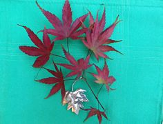 What better herald of the Autumn that a beautiful maple leaf? #mapleleafbrooch, #silverleafbrooch Maple leaf silver brooch lapel pin  by Gull Craft natural