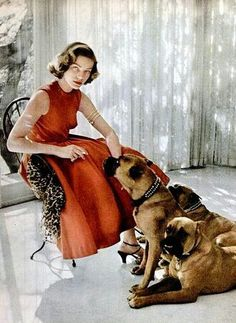Boxers and Bacall? Lauren Bacall sits with her pet Boxers: Harvey, George and Baby- Beverly Hills, April 1953 Humphrey Bogart, Lauren Bacall, Vintage Hollywood, Hollywood Glamour, Classic Hollywood, Hollywood Stars, Hollywood Regency, Boxer And Baby, Boxer Love