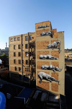 ROA New Mural for I Art Joburg @ Johannesburg, South Africa
