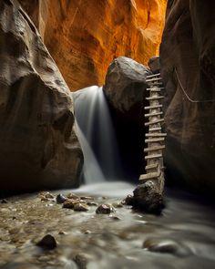 Tree Ladder, Kanarra Creek Canyon, Utah