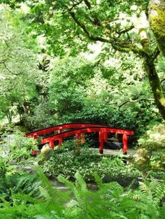 Painted bridge (traditional colors) over stream, Japanese Garden at Butchart Gardens, Victoria, BC, Canada.