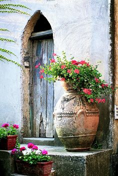 Old world door and weathered terracotta container filled with bougainvillea ~ Ana Rosa Bougainvillea, The Doors, Windows And Doors, Front Doors, Wood Doors, Door Knockers, Doorway, Belle Photo, Container Gardening