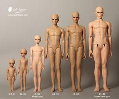 Size comparison photo of Iplehouse dolls #doll