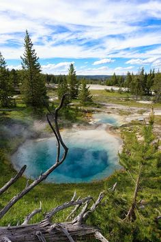 Yellowstone National Park - Wyoming [OC] [1365 x 2048]