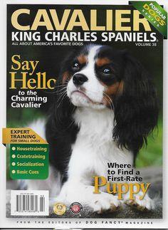 Cavalier King Charles Spaniels dog magazine Training Crate Socialize Basic cues