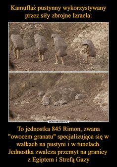 """To jednostka 845 Rimon, zwana """"owocem granatu"""" specjalizująca się w walkach na pustyni i w tunelach. Jednostka zwalcza przemyt na granicy z Egiptem i Strefą Gazy – Past Tens, Cool Inventions, Modern Times, Bts Memes, Funny Photos, Einstein, Haha, Survival, Techno"""