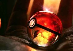 Cyndaquil | 10 Realistic Pokeballs Will Make You Long To Be A Trainer