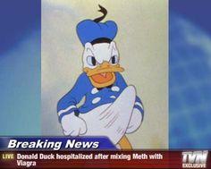 breaking news | Donald Duck Boner | Know Your Meme