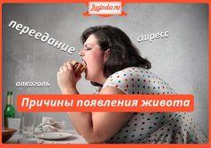 prichiny-poyavleniya-zhivota