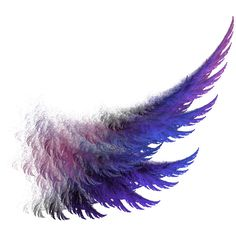 purple_wing_by_capricorn7769-d4hegj4.png ❤ liked on Polyvore featuring backgrounds, wings, art, filler and random