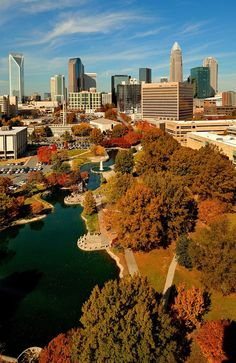 An autumn scene in Charlotte, North Carolina, as shown from overhead looking down into Marshall Park and across to the Charlotte skyline. Home <3