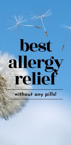 Before you pop another allergy pill to relieve those allergy symptoms, come take a look at these eff Fall Allergies, Seasonal Allergies, It Gets Better, Feel Better, Healthy Morning Routine, Morning Routines, Allergy Relief, Allergy Symptoms, Trouble Sleeping