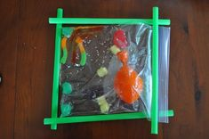 Plant Cells model using candy.